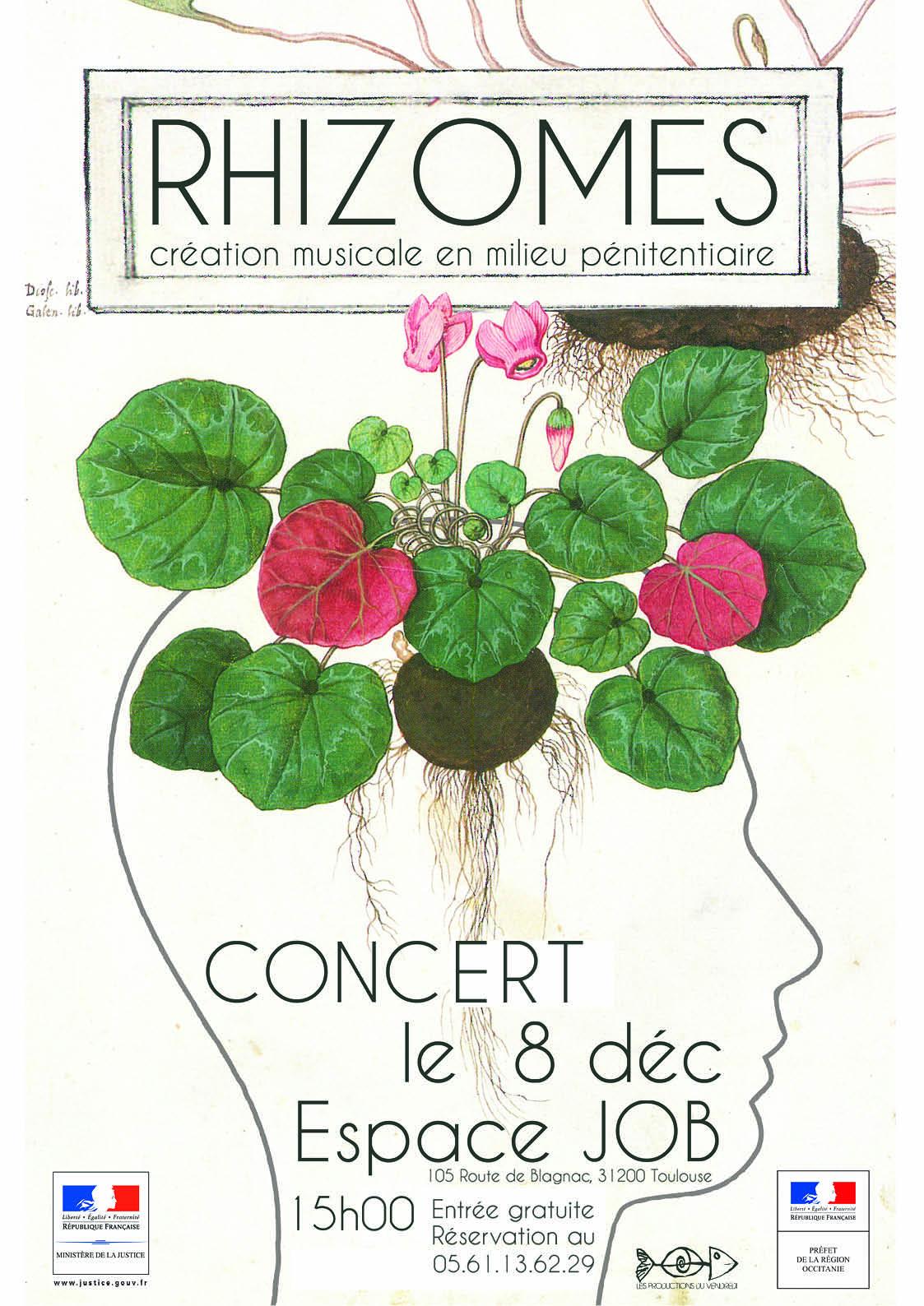 rhizomes-affiche-modif_ld